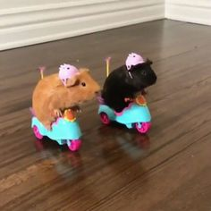 Biker Guinea Pigs via Classy Bro Funny Animal Jokes, Cute Funny Animals, Animal Memes, Baby Animals Super Cute, Cute Little Animals, Baby Farm Animals, Baby Cats, Baby Animals Pictures, Cute Animal Pictures