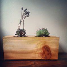 Cedar Wood Succulent Plant Holder by LilCypressWorkshop on Etsy, $10.00