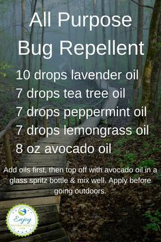 3 Natural Essential Oil Bug Spray Recipes (Enjoy Outdoors Without The Chemicals This all purpose bug repellent is very easy to make, is all natural, and will protect you as well, if not better than commercial bug sprays! Essential Oil Bug Spray, Essential Oil Uses, Doterra Essential Oils, Natural Essential Oils, Mosquito Repellent Essential Oils, Young Living Oils, Young Living Essential Oils, Cough Remedies For Adults, Bug Spray Recipe