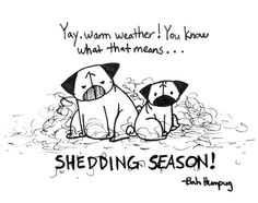 Bah Humpug: That Time of the Year!  (Be afraid.  Be very afraid.)