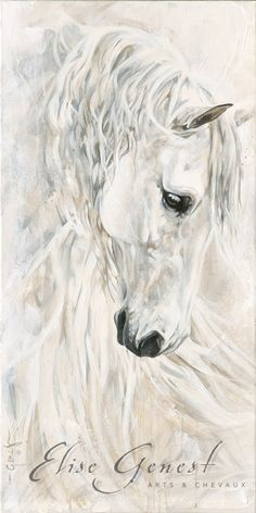 Reproductions giclées sur toile - giclée prints on canvas — Elise Genest Abstract Horse Painting, Watercolor Horse, Watercolor Animals, Knife Painting, Horse Drawings, Art Drawings, Arte Equina, Horse Sketch, Horse Artwork