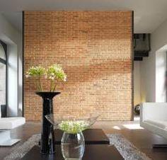 Brick of Live Stone