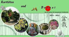 Bonsai-schule-Schneider
