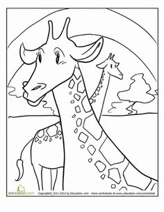 Your little zoologist will have a blast coloring these worksheets featuring cool zoo animals with tons of personality. Giraffe Coloring Pages, Coloring Sheets, Coloring Books, Giraffe Colors, Kindergarten Math Worksheets, Creative Skills, Zoo Animals, Printable Coloring Pages, Note Cards