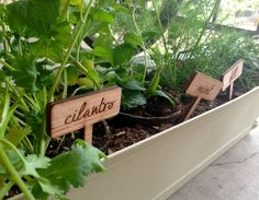 Custom Etched Wood Herb Garden Plant Markers