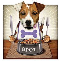 Pet Nutrition Tips for your Dog & Cat