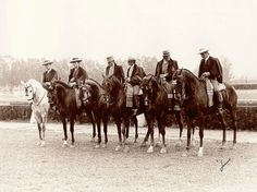 The Tres Sangres or Three Blood Horses have been traditionally bred in a number of Spanish Studs together with PRE or Andalusian horses as well as Iberian bulls farms.