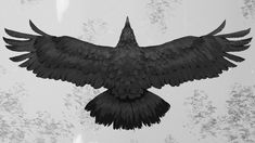 Raven Art Print by AlanLinnstaedt - X-Small Crows Drawing, Rabe Tattoo, Black Bird Tattoo, Crow Bird, Dark Wings, The Ancient Magus, Raven Art, Crows Ravens, Tattoo Project
