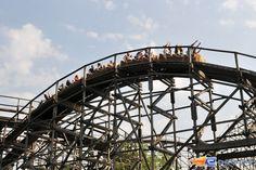 12/14 | Photo du Roller Coaster Colossos situé à Heide-Park (Allemagne). Plus d'information sur notre site www.e-coasters.com !! Tous les meilleurs Parcs d'Attractions sur un seul site web !! Découvrez également notre vidéo embarquée à cette adresse : http://youtu.be/9bWLKRgvd3w