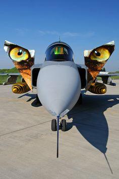 JAS39 Tigermeet