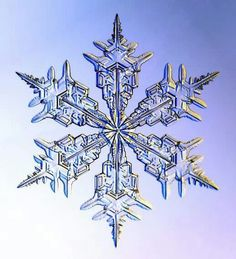 Snowflakes are ice-crystals, a particular form of water ice .Ice-crystals are appear as clear glass but more fragile. Several factors affect snowflake formation. Snowflake Images, Snowflake Tattoos, Simple Snowflake, I Love Snow, Fotografia Macro, Ice Crystals, Things Under A Microscope, Snow And Ice, Winter Beauty