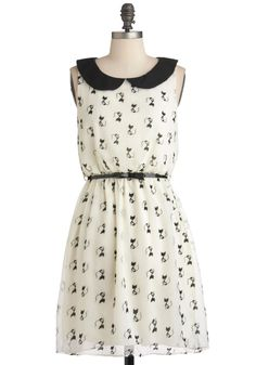 Imagine Me and Meow Dress - Mid-length, White, Black, Print with Animals, Novelty Print, Belted, Party, Casual, A-line, Sleeveless, Spring, Quirky