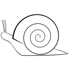 simple snail coloring page for toddlers | animal coloring activity ...