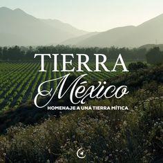 ¡Pronto Tierra México!