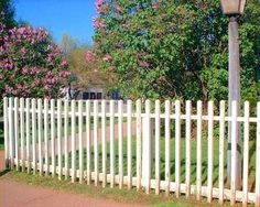 Fence Pictures of Different Types, Configurations and for Various Purposes