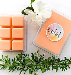 High quality, hand poured candles using premium fragrance oils, natural eco-friendly soy wax & superior glassware. Scented Wax Melts, Soy Wax Melts, Soy Candles, Scented Candles, Coconut Flower, Strawberry Champagne, Fragrance Oil, Rose Petals, Perth