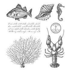 By The Tide Clear-Mount Stamp Set - Stampin' Up!