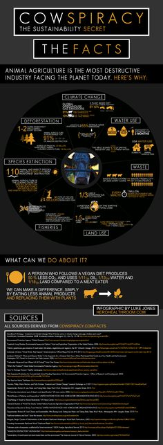 Cowspiracy-Infographic.png (1932×5264)
