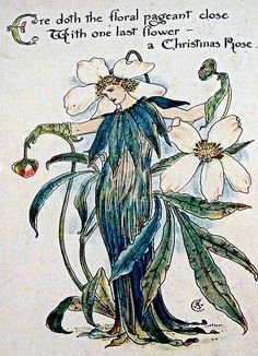 Christmas Rose, Walter Crane