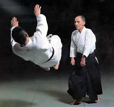 Google Image Result for http://www.koshinkan-aikido.co.uk/images/gozo/gz3.jpg