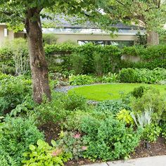 Reduce Grass  Every lawn grass -- even those labeled as shade-tolerant -- struggles if it doesn't get enough light. So instead of fighting a big patch of fading grass, keep only a small section of turf and make it a landscape element by surrounding it with a wide swath of shade-loving plants. Or give up the grass and select shade-loving groundcovers