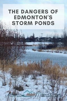 Stormwater ponds in Edmonton look inviting but they're not for recreational use & are dangerous so much so that Epcor is urging all Edmontonians to stay off the ice Ponds, Exploring, Outdoor, Outdoors, Outdoor Living, Lakes, Garden, Pools, Study