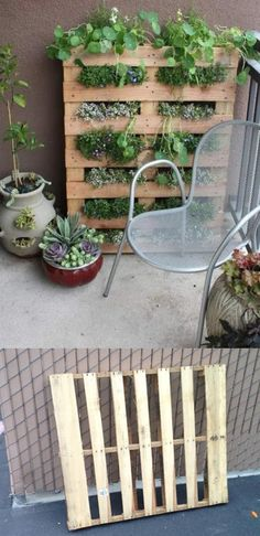 Vertical garden using a pallet 0.o So much more affordable than what I have found online and recycled as well!