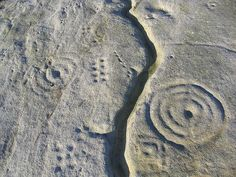 Chatton Park hill cup and ring marked stone, Northumberland