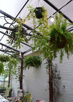 Bourne & Hollingsworth Buildings London restaurant interiors bloggers guide botanical