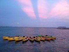 Kayaks on the Bio Luminiscent bay, Puerto Rico