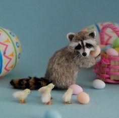 Reve. Racoon. Easter.