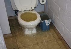 Verstopt toilet? Geen nood, met deze tip heb je hem zo ontstopt!