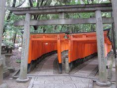 toriis | Torii, toriis and more toriis. [2010/09/23 - Kyoto/Fushimi Inari ...