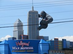 Hollywood Wax Museum in Myrtle Beach, SC Brand new opened July 2014 1808 Ave. One Ticket, Myrtle Beach South Carolina, Wax Museum, Willis Tower, 21st, Hollywood, Tours, Entertaining, Vacation