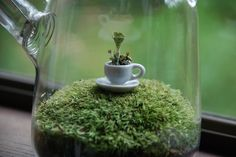Etsy の Green Tea with Lichen by weegreenspot