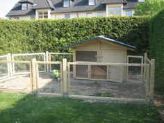Very big rabbit hutch, would prefer something over the top to prevent birds getting in and animals like dogs and foxes or cats leaping over :)