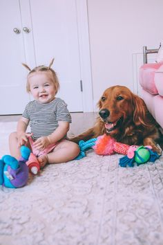 Ro and Chauncey playing with the pup's Trolls Pet Fans Collection toys from Petco! #ad