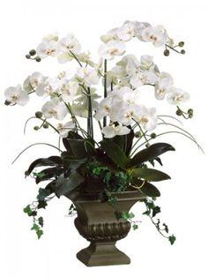 Phalaenopsis Large Silk Orchid Arrangement Silk Like Phalaenopsis Orchids in Fiberglass Urn Cream Green Tulpen Arrangements, Orchid Flower Arrangements, Peony Arrangement, Artificial Floral Arrangements, Artificial Orchids, Sunflower Arrangements, Silk Orchids, Phalaenopsis Orchid, White Orchids