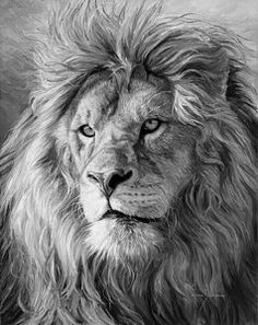 Painting - Portrait Of A Lion - Black And White by Lucie Bilodeau