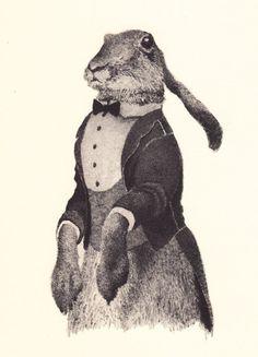 vestcoat rabbit