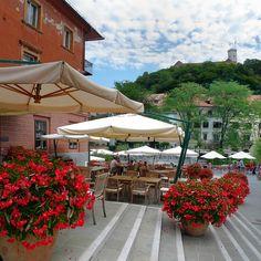 Inviting flower terrace in the beloved old Ljubljana, Slovenia.