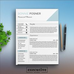 Professional  Page Resume Template  Cv  Cover Letters A  Us