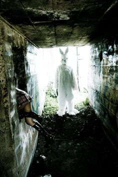 Bizarre And Creepy Photography - Rabbits are scary as clowns!