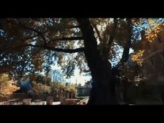 Zagori Views Beach Bars, Aerial View, Greece, Videos, Plants, Pictures, Greece Country, Photos, Plant