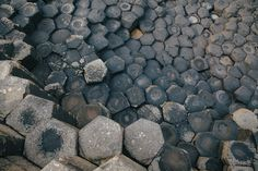 Hexagonal lava at the Giant's Causeway. Taken form the beautiful magazine Cereal #3.