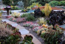 Gardens by Gabriel - San Luis Obispo Landscapes and Design - California Central Coast Ecological Landscaping