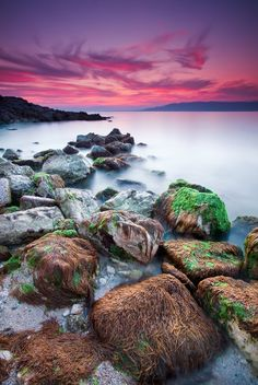 Cap d'Antibes #22 (French Riviera)