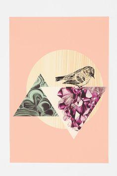 Bird Geode Poster