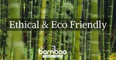 Ethical & Eco Friendly Products from The Bamboo Pillow! The Bamboo Pillow believes in offering high-quality products while still caring for the environment. We are committed to only use bamboo materials sourced from suppliers that are in line with our own ethical and eco-friendly standards.  Each time you purchase bamboo products, you're not only creating a better, more sustainable lifestyle for you and your family, but you're also making a significant contribution to bamboo farmers…