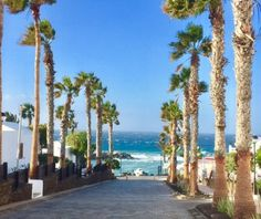 TUI Family Life Flamingo Beach Resort, Playa Blanca Picture: Flamingo beach resort just on the beach - Check out TripAdvisor members' 4,663 candid photos and videos.